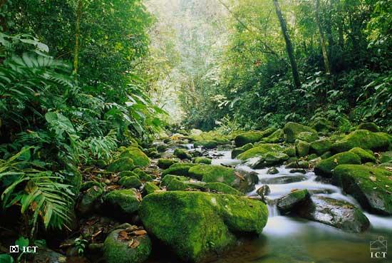 costa-rica-eco-tourism1